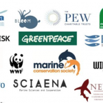 NGOs send joint letter to Commissioner Vella calling on the Commission to ensure effective implementation of new EU regulation to protect deep-sea ecosystems from the harmful impacts of deep-sea fishing